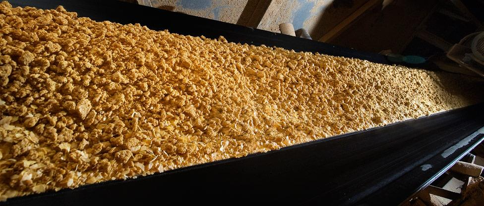 Soybean flakes for extraction at Denofa in Fredrikstad, Norway
